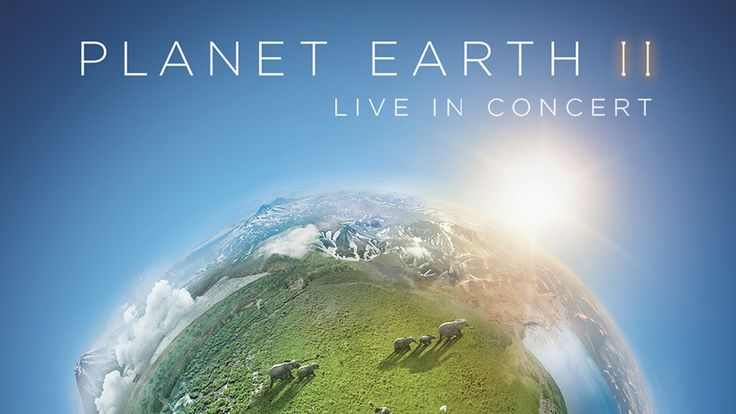 """Full-watch! Planet Earth II Season 1 Episode 6 online FOX 2018,Watch Planet Earth II Season 1 Episode 6 Online. Genre: Reality """"Title: Series 1, Episode 6"""" One Click Link Below You Can Watching Television Series From tv.xride-hd Free Download Planet Earth II S01E06 Planet Earth II Season 1 Episode 6 Show Planet Earth II 1X6 Full Video Quality HD Streaming Planet Earth II Season 1 Episode 6 Live."""
