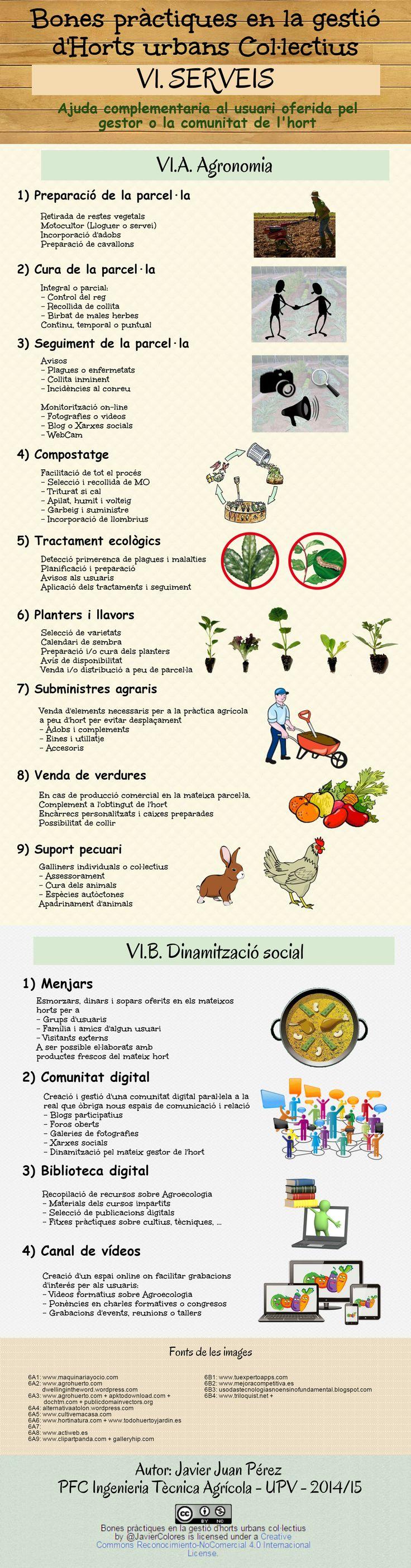 VI. SERVEIS Ajuda complementaria al usuari oferida pel gestor o la comunitat de l'hort