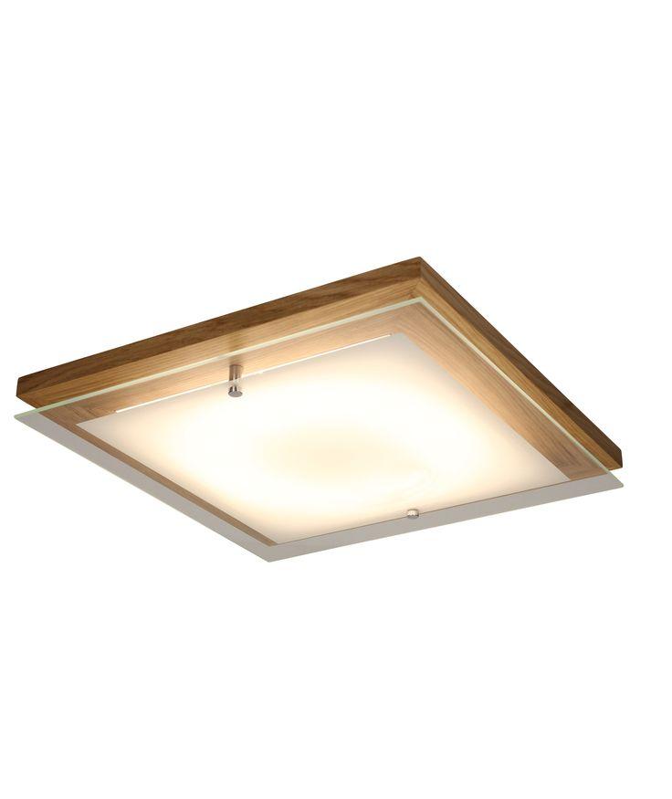 Finn plafond lamp, Spot Light