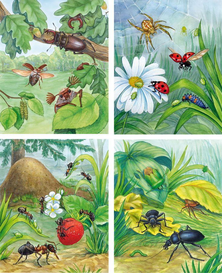 сказка про насекомых с иллюстрациями при такой