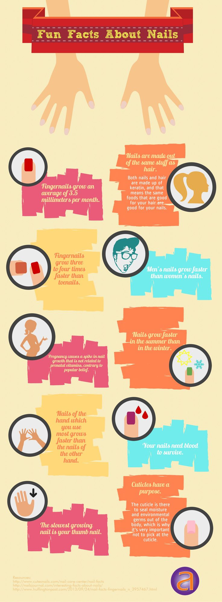 Fun Facts About Nails   #infographic #Nails #FunFacts