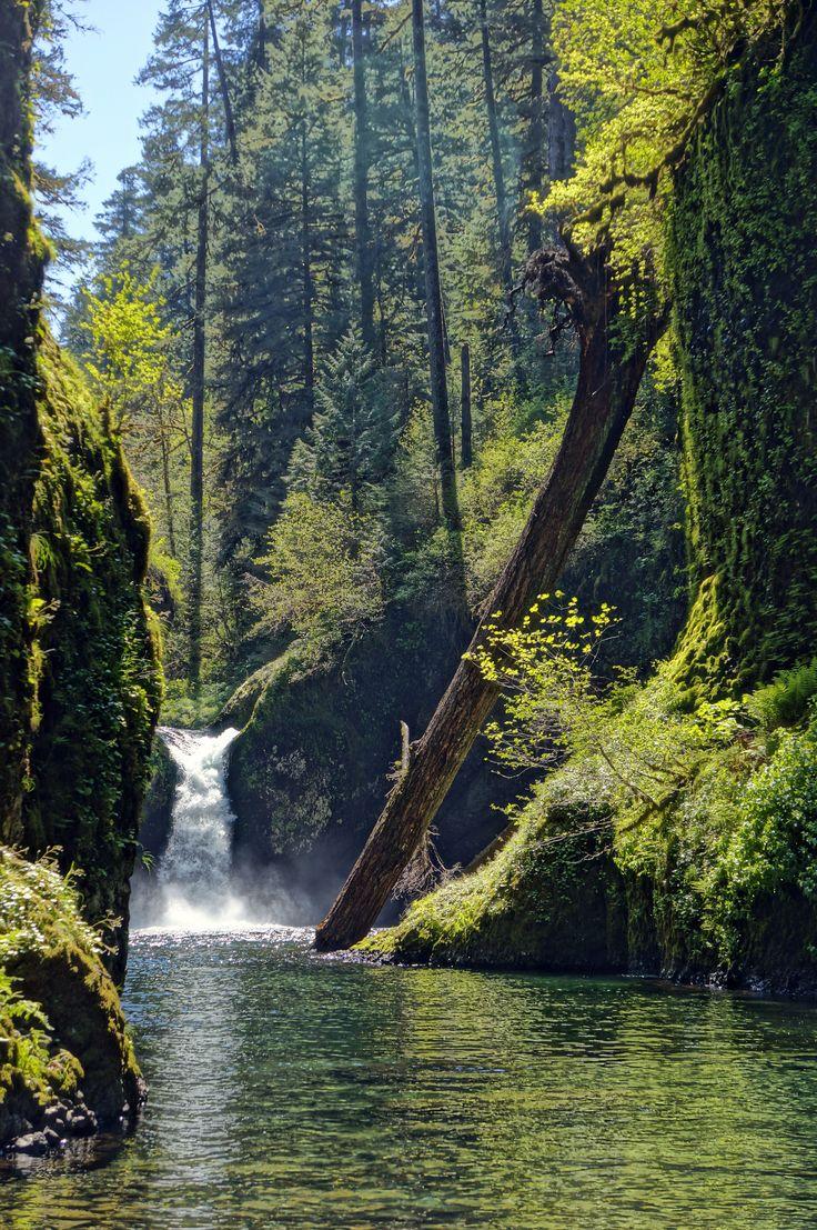Lower Punch Bowl Falls