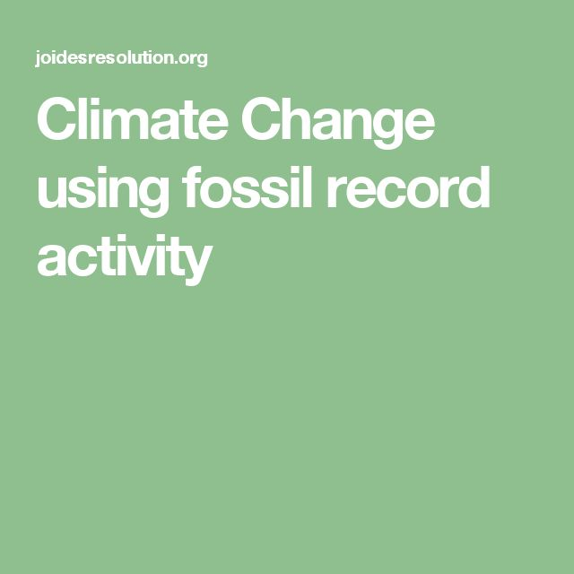 56 Best Fossils Images On Pinterest Science Classroom Fossils And