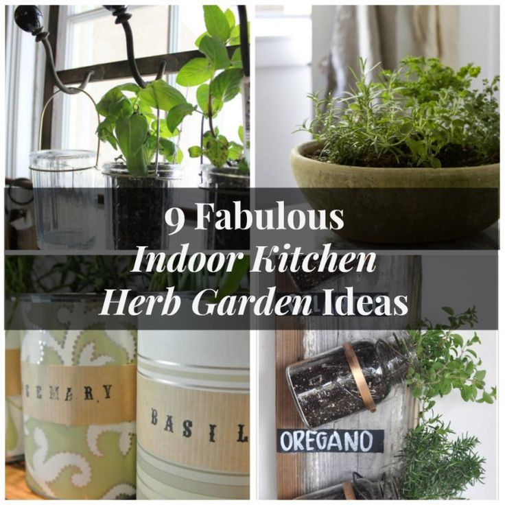 Kitchen Garden Pics: 1000+ Ideas About Kitchen Herb Gardens On Pinterest