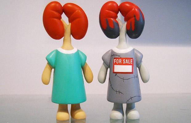 ¿Viste Esto? Muñecas del Donante de Órganos - Taringa!