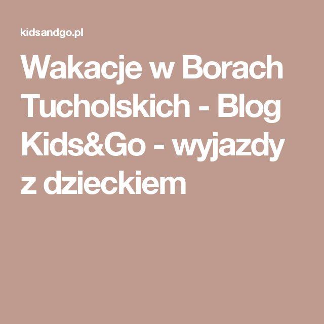 Wakacje w Borach Tucholskich - Blog Kids&Go - wyjazdy z dzieckiem