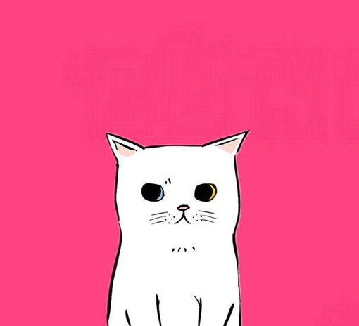 Pensive white pussycat on pink