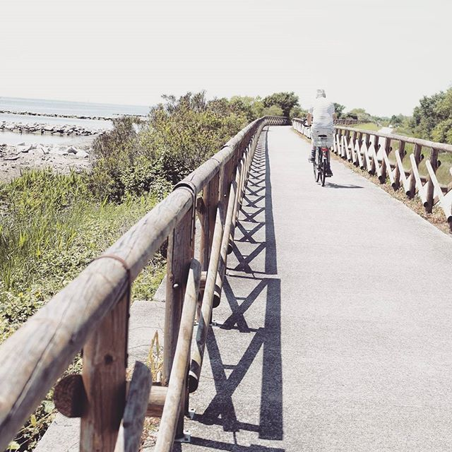 La vita è come andare in #bicicletta. Per mantenere l'equilibrio devi muoverti. (Albert Einstein) #followgrado #fvglive  E mi sa che presto si ritorna a #Grado, in un week end ha già lasciato il segno! #followgrado #TBNet #fvglive