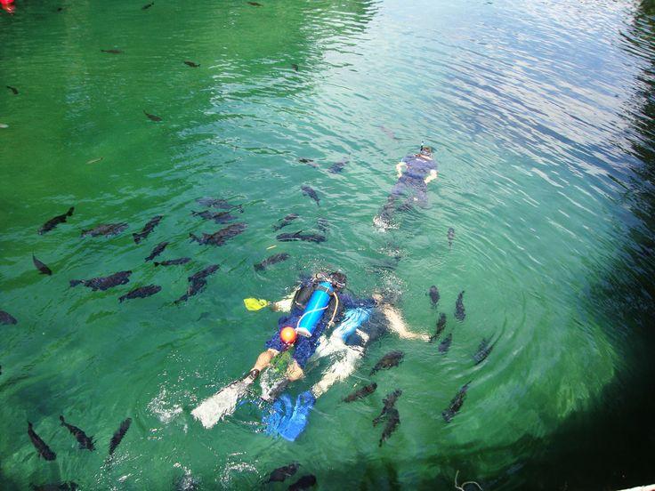 Mergulho no Rio Quente
