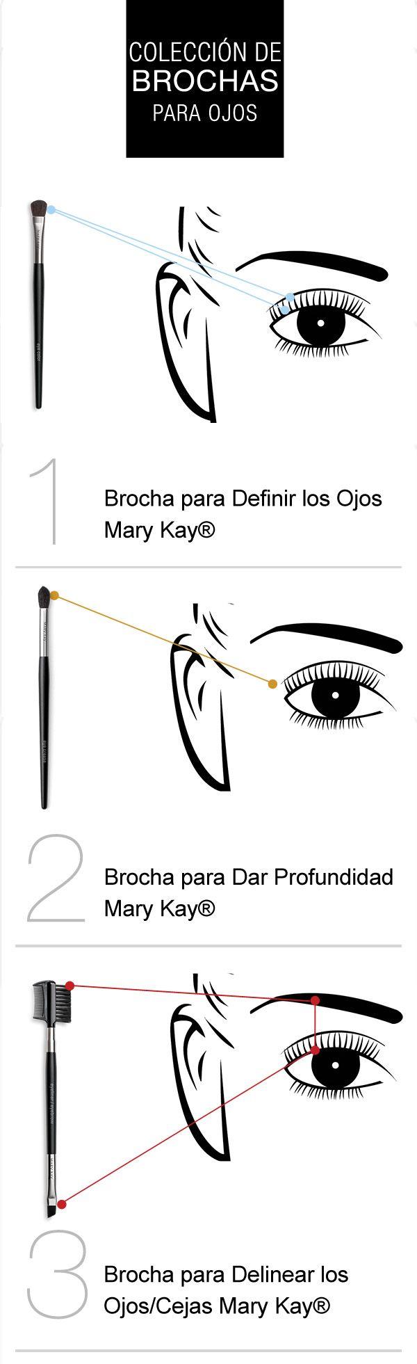 Para unos looks de ojos dignos de una profesional, asegúrate de utilizar las brochas adecuadas y acuérdate de que difuminar es primordial. www.marykay.com.mx/almareza #marykaydfsur Facebook/Ilumina tu Belleza con Mary Kay
