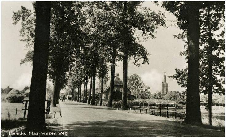 Leende, Maarheezerweg  gezien richting Leende. 1950 - 1960