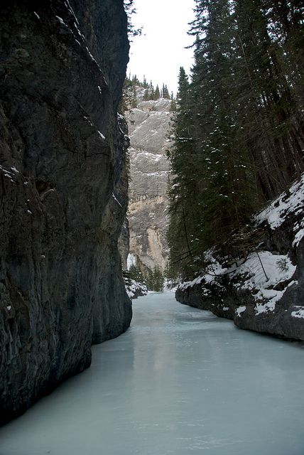 Grotto Canyon, near Canmore, Alberta