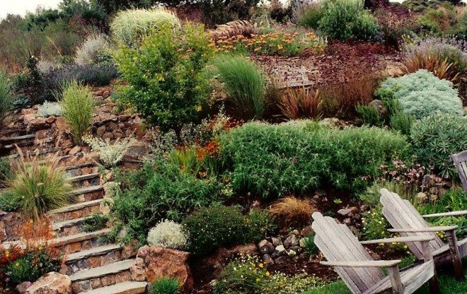 40 best images about home backyard landscaping on pinterest - Ideas for hillside landscape ...