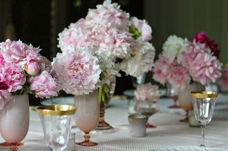 ¿qué Flores puedo Plantar en Mayo y en Junio? | Ideas Jardineros