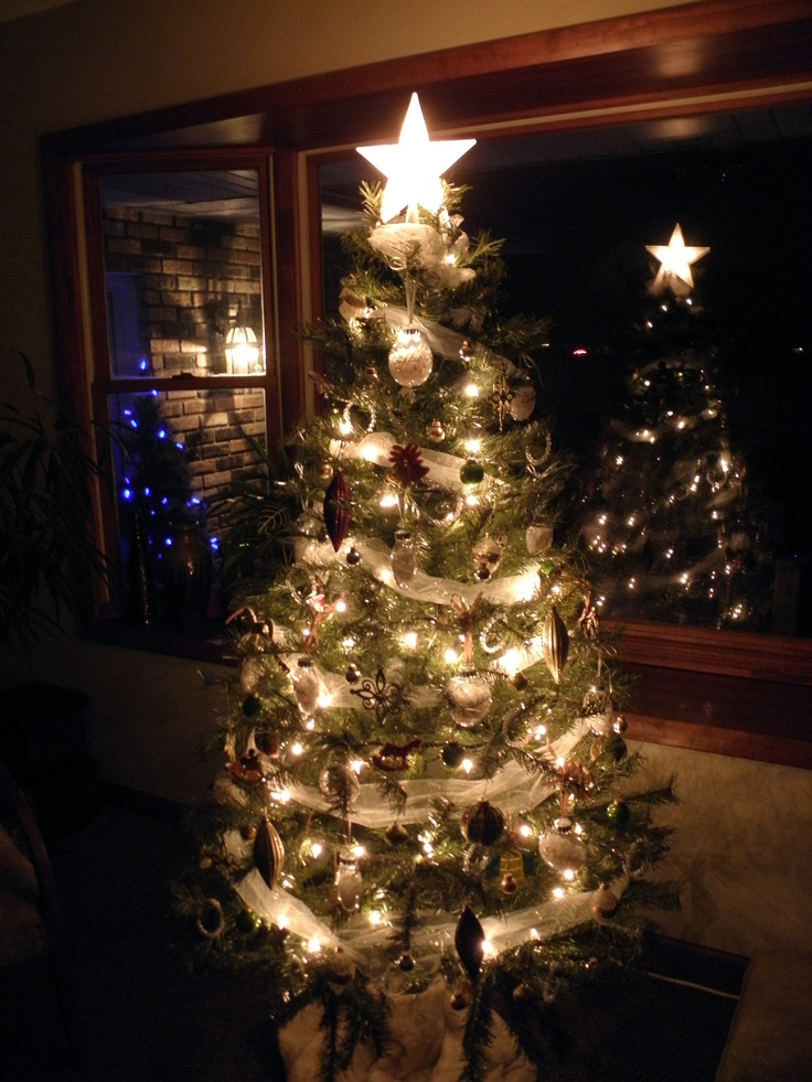 22 Best Christmas Tree Ideas Images On Pinterest Merry