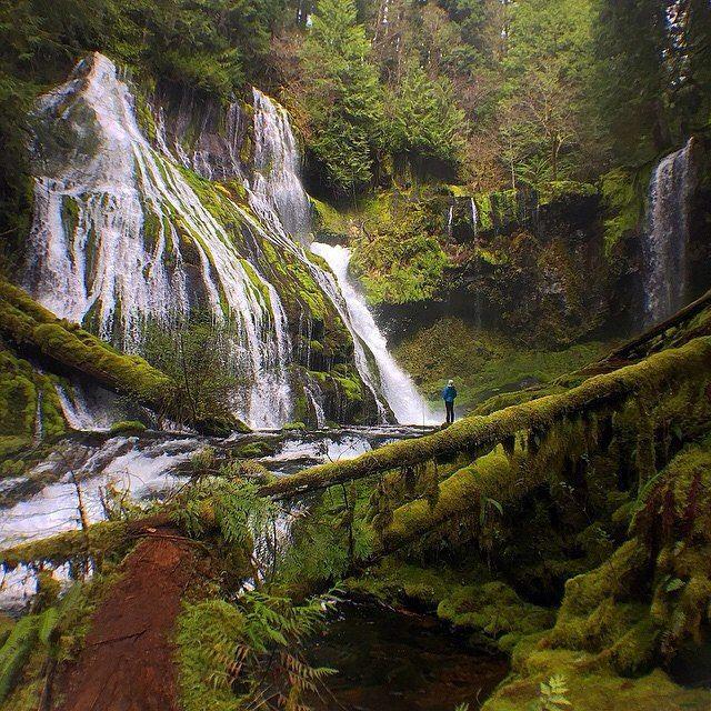 Природа всегда приводила в благоговейный трепет Мэттью Коэна (@matthew__cohen) юриста из Портленда. Я родился в Милуоки штат Висконсин а вырос на берегу озера Мичиган  вспоминает Мэттью.  В раннем детстве я любовался природой исследуя лесистые берега огромного озера. Теперь Мэттью живет на северо-западе США но не дает своей любви к лесам угаснуть совершая вместе с женой Тессой (@la_tigressa) регулярные путешествия на водопады в штатах Орегон и Вашингтон. Когда я посещаю водопады все мои…