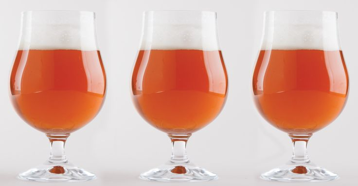 Scratch Brewing's Dead Leaves and Carrots Beer Recipe Primary Image