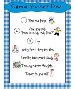 behaviour management in primary schools essay