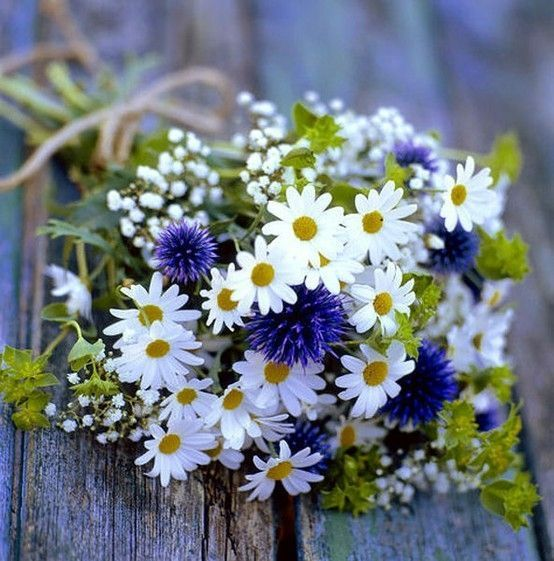 bouquet with daisies, cornflowers, baby's breath - Google Search