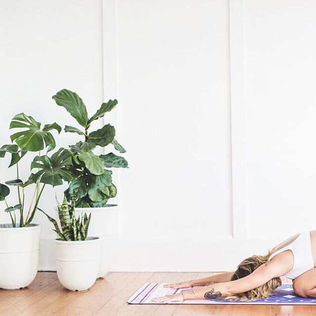 Our Boucherouite yoga mat. Made from recycled natural tree rubber bonded to an absorbent & non-slip microfibre suede surface! Shipping globally ✈️