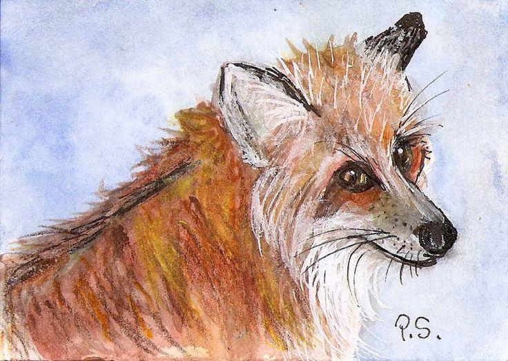 ACEO TW MAR Red fox Original Painting Watercolor & Pen Art by Penny Lee StewArt #Realism