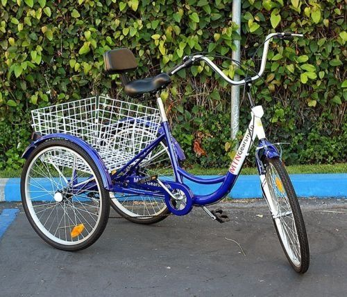 Best 25 Adult Tricycle Ideas On Pinterest