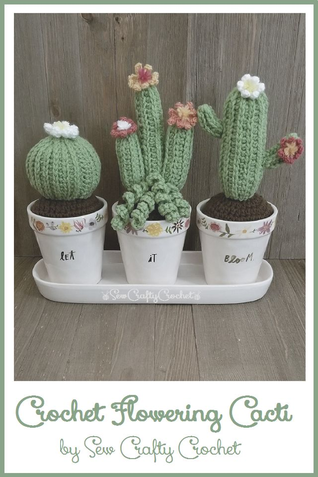 Crochet Flowering Cactus ~ Sew Crafty Crochet