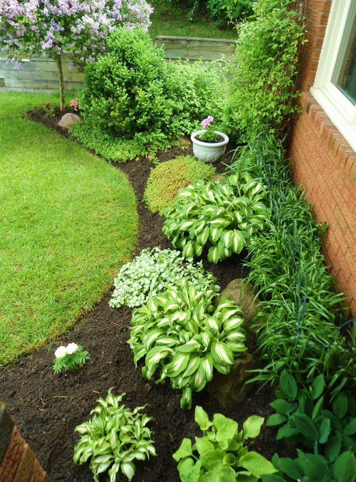 17 best ideas about southern landscaping on pinterest for Low maintenance plants for garden beds