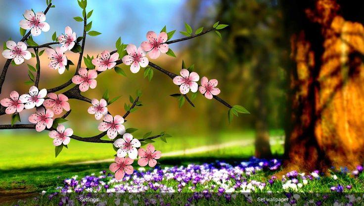 Flowers Wallpapers Hd Widescreen  wallpaper Pinterest