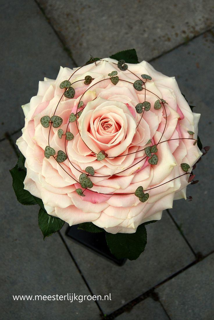 Glamelia bruidsboeket van rozenblaadjes in romantische zachtroze / zalm tint (glamelia boeket = samengesteld boeket). Er overheen strengen van de Ceropegia (hartvormige blaadjes). www.meesterlijkgroen.nl