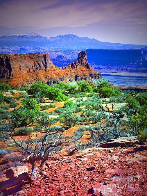 Canyonlands National Park, Utah Southwest Usa http://goo.gl/WKbqhi