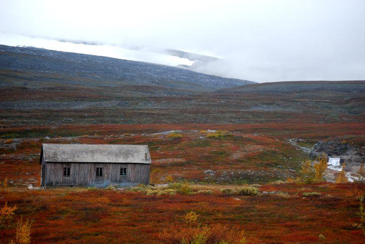 Norway, Saltfjellet –Svartisen National Park