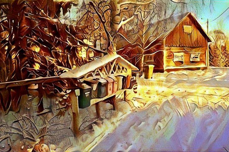 SNOWY FINNISH COUNTRYSIDE