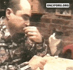 A cat signing 'food' to his deaf owner