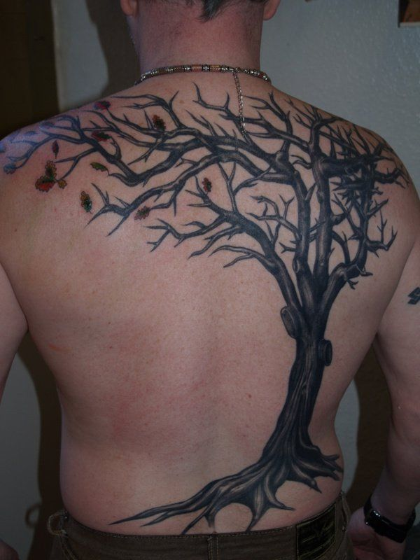 1000 ideas about tree tattoo designs on pinterest palm for Apple tree tattoo designs