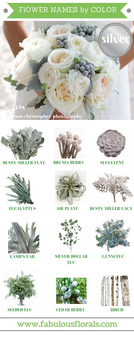 Grey / silver blooms