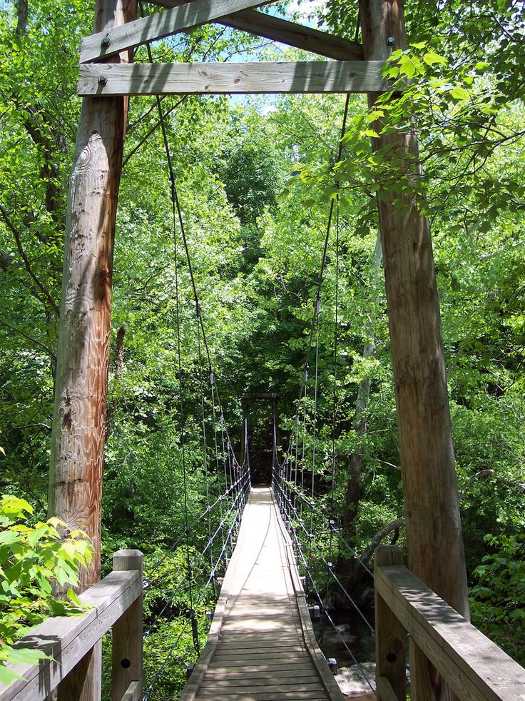 eno river state park, foot bridge. durham, nc, usa