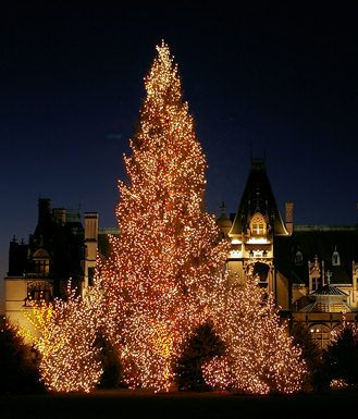 Top 10 Asheville Holiday & Christmas Outings & 2012 Events