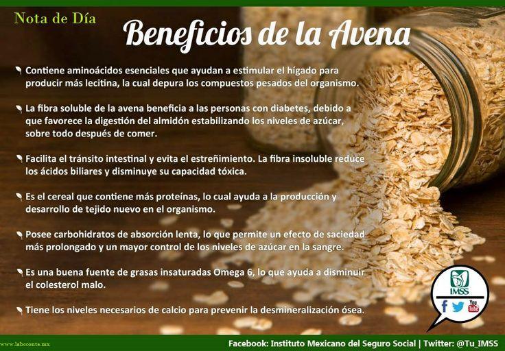 """Avena - Propiedades y beneficios Las propiedades de la avena hacen que resulte un alimento nutricional muy saludable disponible durante todo el año y que proporciona energía y fuerza a quién lo toma. La avena procede de la familia de las poáceas y su nombre viene de la derivación """"aveo"""" que significa deseo. Se valora mucho gracias a sus propiedades alimenticias.... Ver más https://www.facebook.com/LabcconteMexico/photos/a.517413648279986.108880.510021449019206/765072560180759/?type=1&theater"""