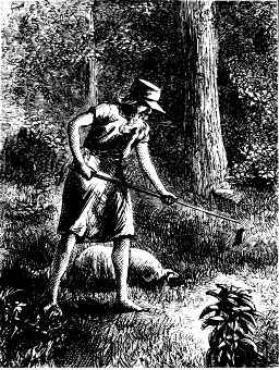 Johnny Appleseed (John Chapman), Harper's New Monthly Magazine, Sept 1774-1845. His dream was a land blossoming with apple trees where no one was hungry. A gentle and kind man, he slept outdoors and walked barefoot around the country planting apple seeds. Johnny was a friend to everyone he met, Indians, settlers, even animals. His clothes were made from sacks and his hat was a tin pot, also used for cooking. His favorite book was the Bible.
