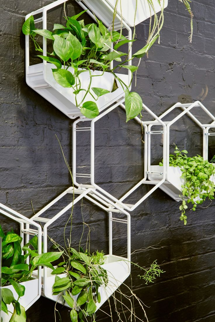 Wabe was designed with a specific vision in mind: to create a beautiful, sculptural and cost-effective vertical garden solution. Able to be used as a singl