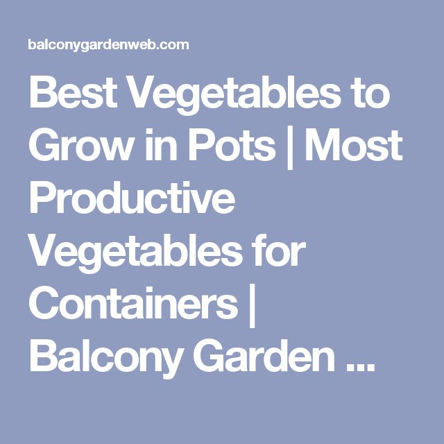 Best Vegetables to Grow in Pots | Most Productive Vegetables for Containers | Balcony Garden Web