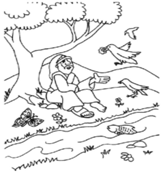 56 best elisha fed by the ravens images on pinterest for David and his brothers coloring page