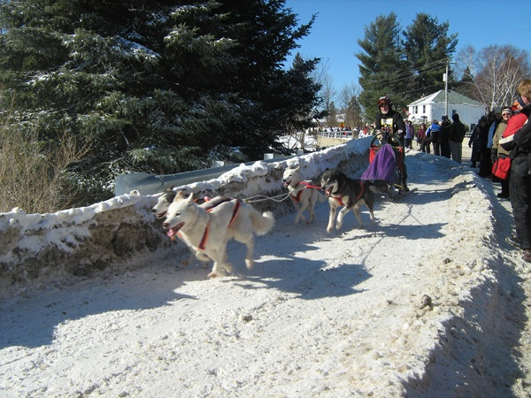 Saturday at the Kearney Dog Sled Races