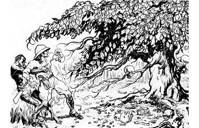 Man-eating Tree - http://mythology.net/mythical-creatures/man-eating-tree/