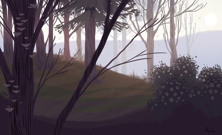 Woods on Behance