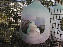 homemade pigeon nest box - Google Search