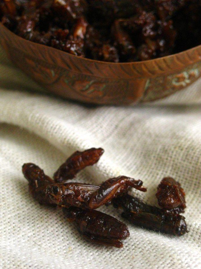 honey locusts