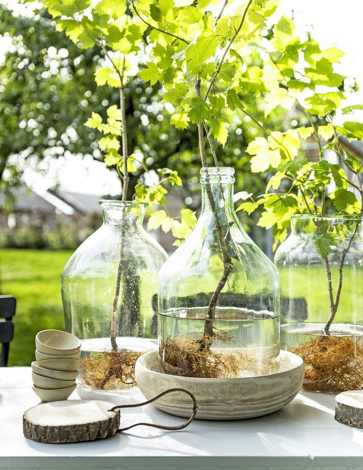 gardentable decorations |  tuintafel decoratie | Photography Sjoerd Eickmans | Styling Gieke van Lon (humade.nl) and Lotte Dekker | vtwonen 05-2016