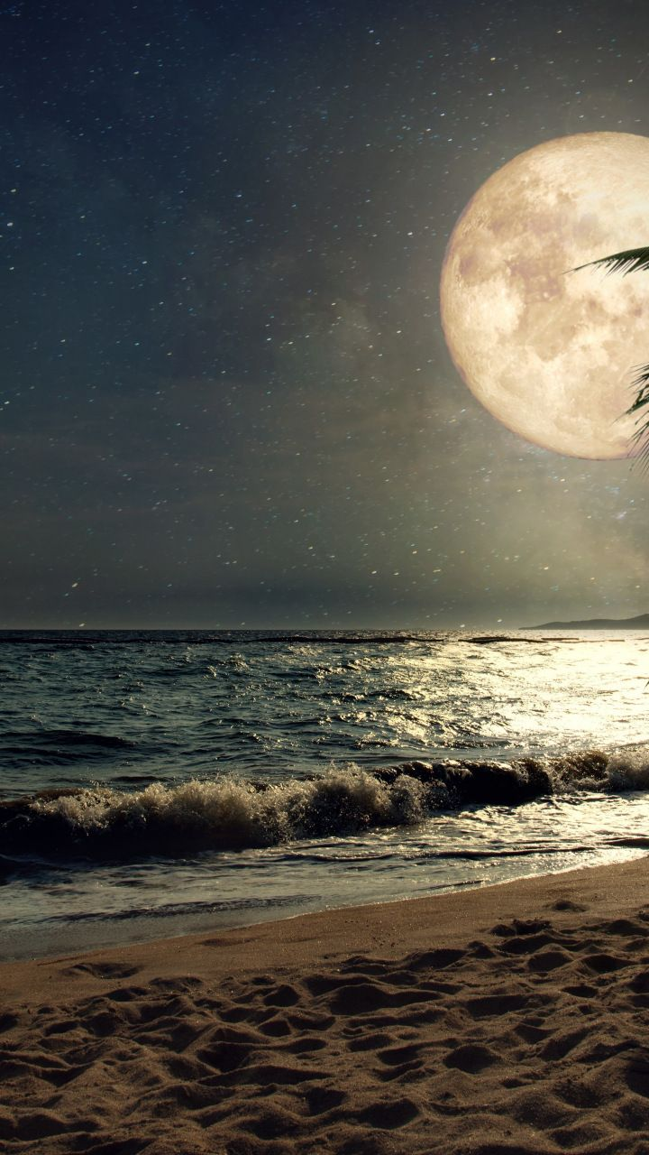 Beach Sand Night S Moon Palm Tree Nature 720x1280 Wallpaper Scenery Wallpaper Moon Art Moon Photography